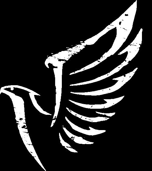 Logo Falke Hotel Falkenstein